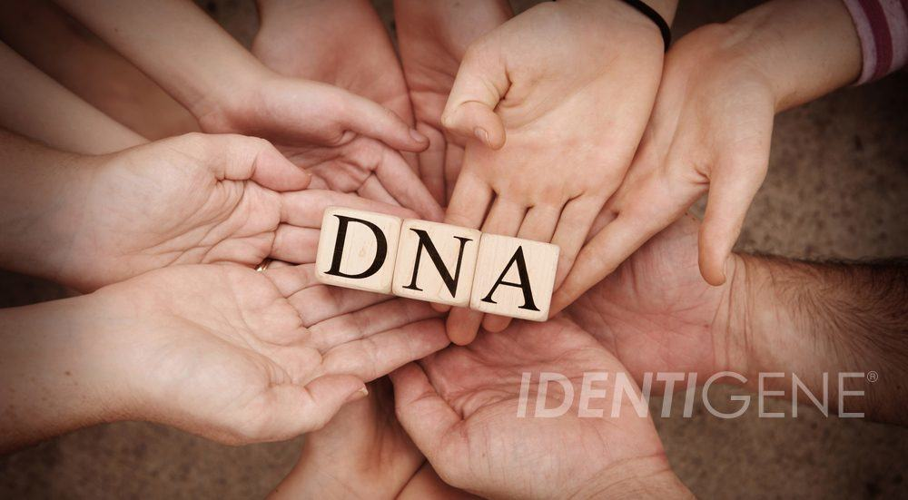 IDENTIGENE DNA Building Blocks