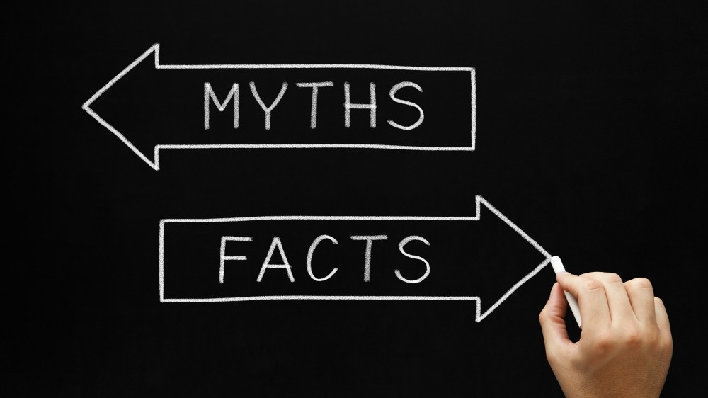 Image result for facts myths